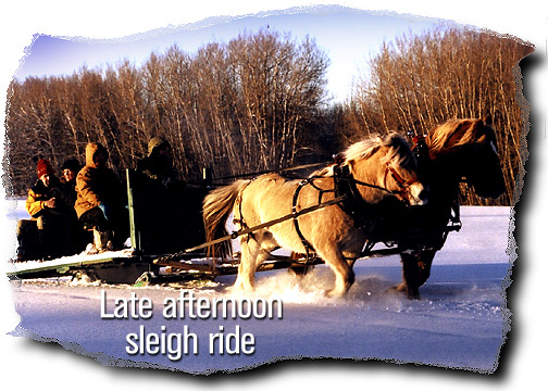 Late afternoon sleigh ride